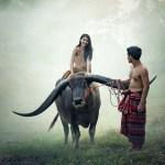 Boer zoekt vrouw aflevering 5: Hermans keuzemoment