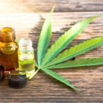 Drink weed everyday: Waarom gebruiken mensen cannabisolie (ofwel CBD-olie)?