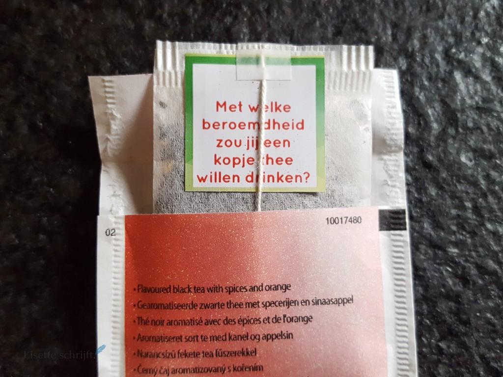 domme vragen theezakje Lisette Schrijft