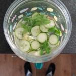 Water drinken leuker maken? Maak water met een smaakje!