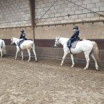 3 kinderen krijgen les in paardrijden Lisette Schrijft