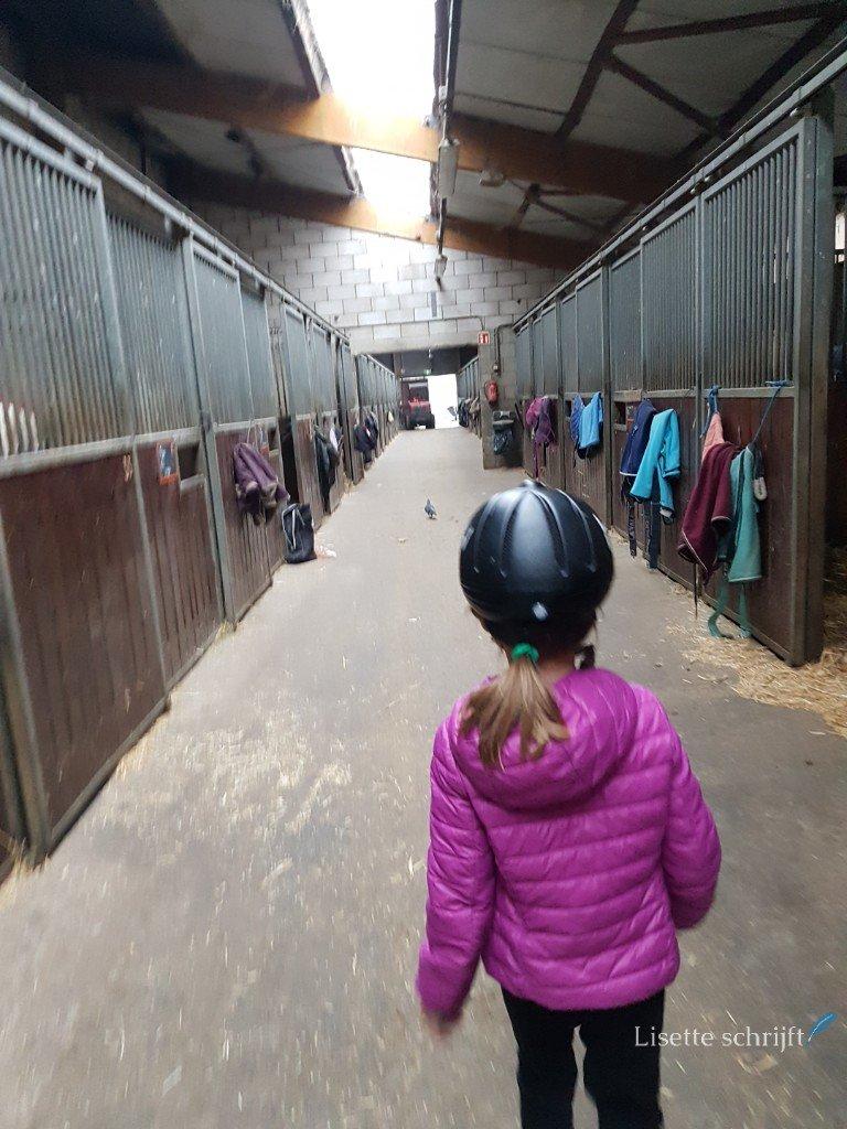 lopen langs de paardenboxen richting paardrijles Lisette Schrijft