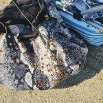 lieveheersbeestjes op het strand