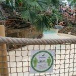 Coronamaatregelen bij Center Parcs: onze ervaringen