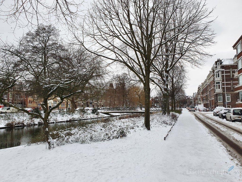sneeuw en ijs in Rotterdam