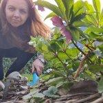 3 tips voor een kleurrijke tuin