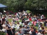 The main lawn of Lisgar Gardens. Where is the lawn?