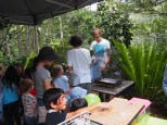 """The small animals """"Farm"""" brought by Hornsby Heights Vets was a huge crowd pleaser"""