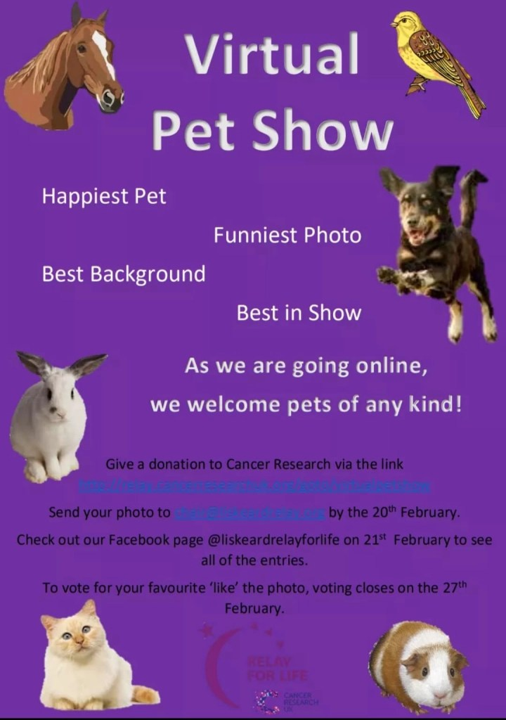 Pet Competition Poster