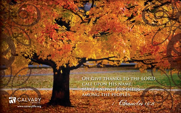Thanksgiving (47)