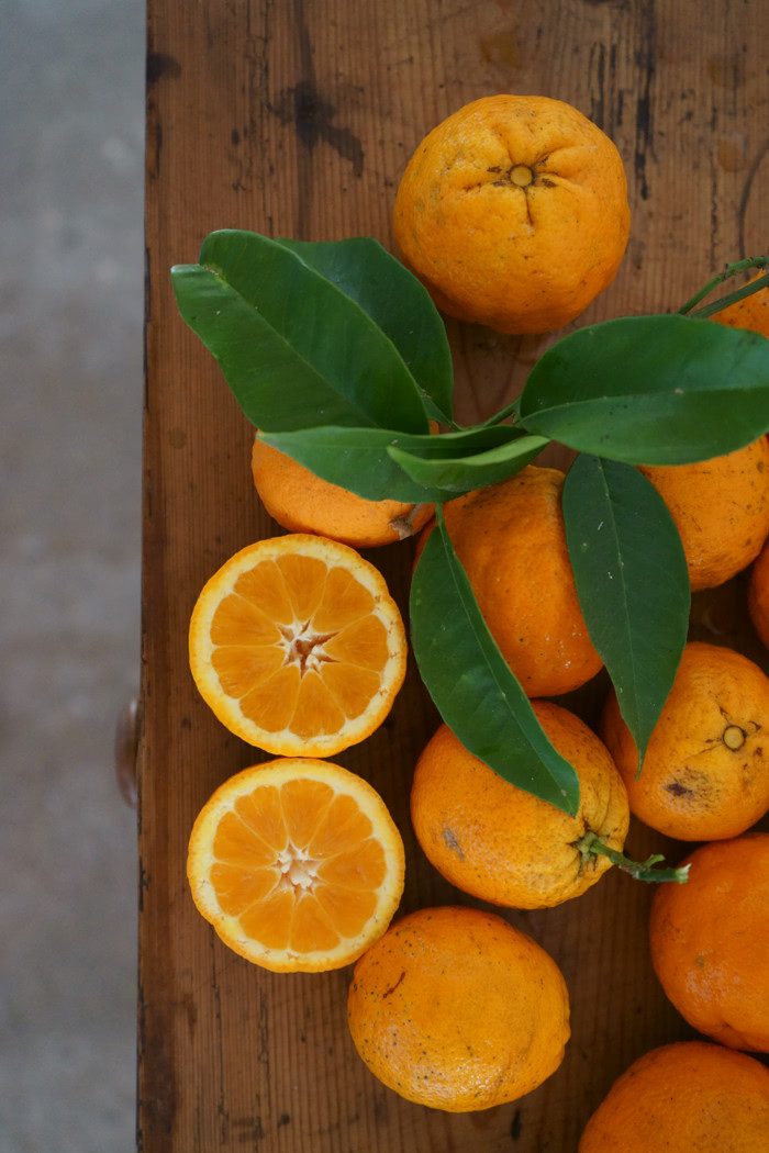 Mallorquinische Orangenmarmelade