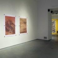 McMaster Museum installation