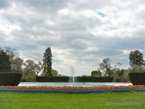More tulips and perfect hedges circle the Lawn fountain
