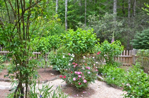 Topiary hydrangea and roses encircle the gazebo