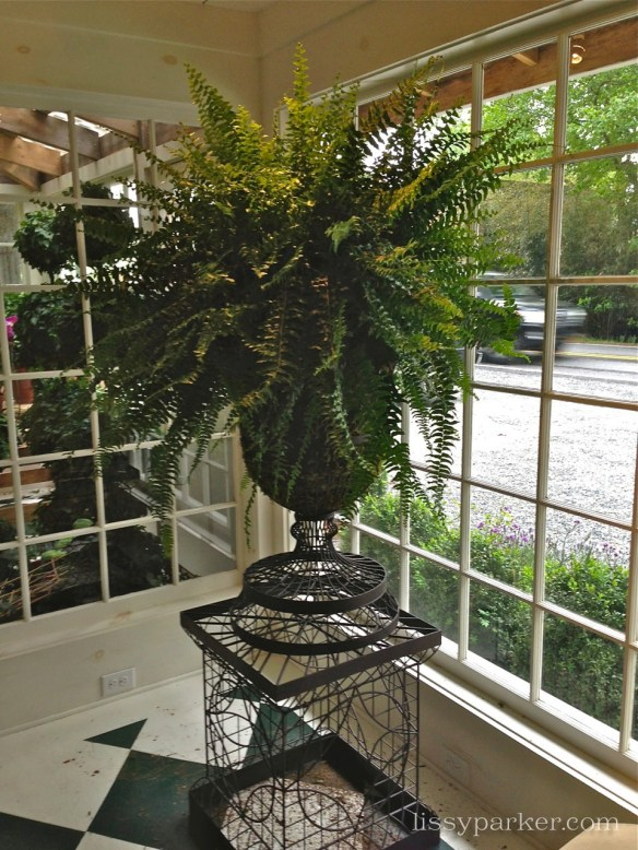 I might need these urns lined with moss and planted with ferns