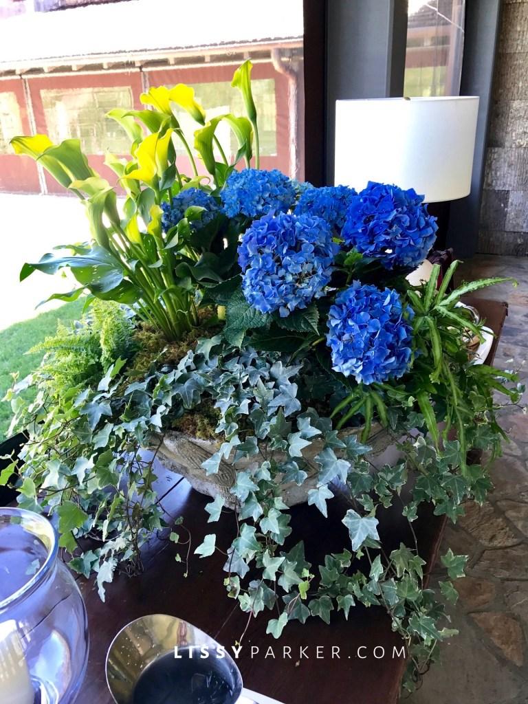 large blue hydrangea