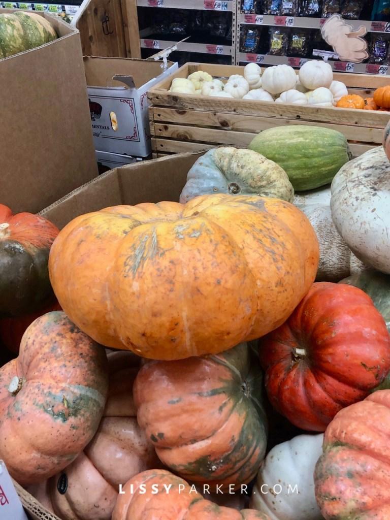Trader Joe's pumpkins