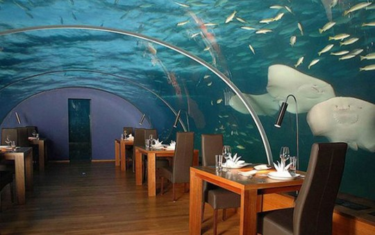 best hydropolis underwater hotel dubai pictures image collection