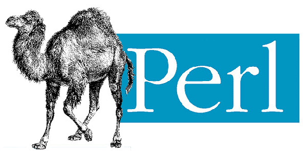 Perl Programming Language for Job Opportunity