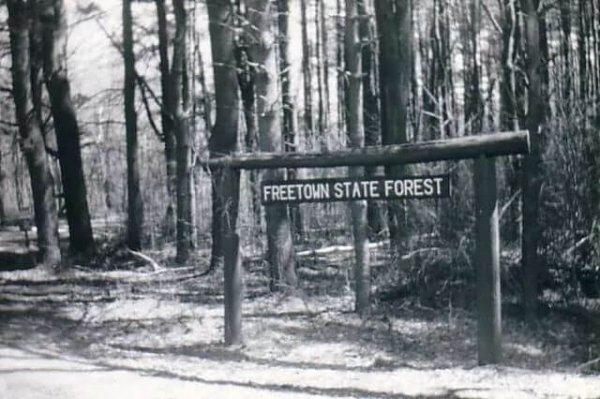 Freetown State Forest