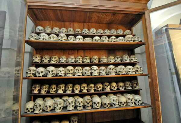 Lombrosos Museum of Criminal Anthropology