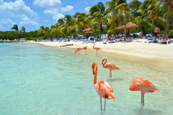 20 Breathtaking Beaches - Flamingo Beach Aruba