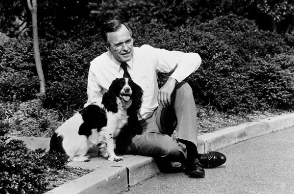 Presidential dogs: George H. W. Bush & Millie