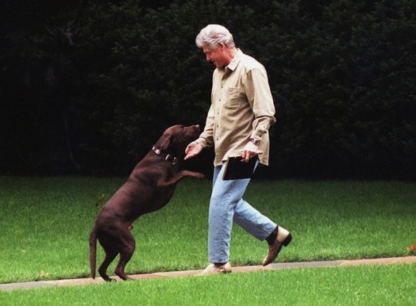 Presidential dogs: Bill Clinton and His Chocolate Labrador Buddy