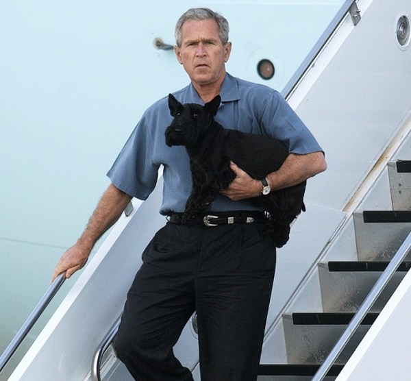 Presidential dogs: George Bush and His dog