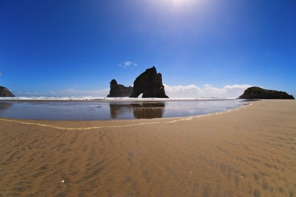 20 Breathtaking Beaches Wharariki Beach