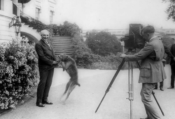 Presidential dogs: Warren G Harding with Laddie Boy
