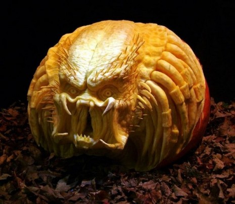 The predator carved pumpkin