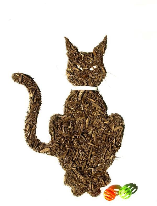 Dirt Cat