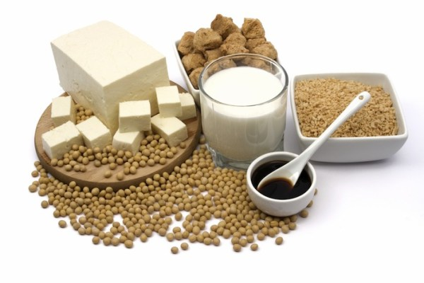 Effect of soy products on sperm count