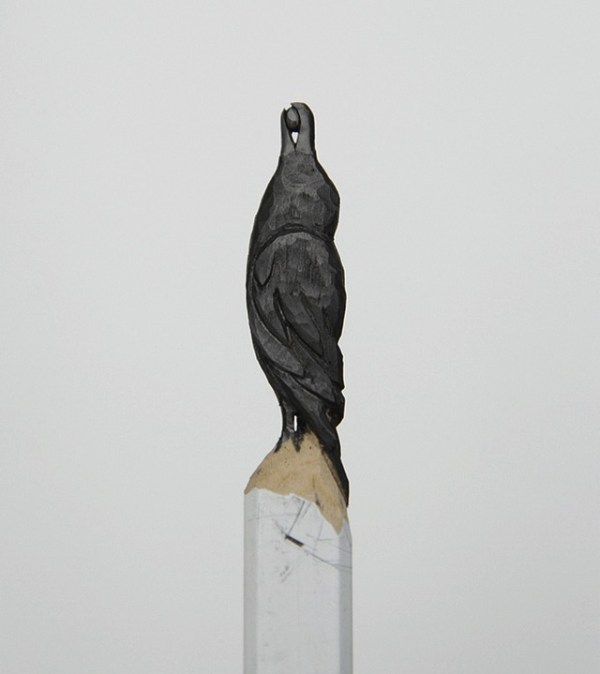 lead pencil bird
