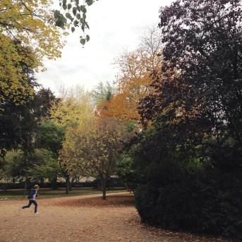 Jardim de Luxemburgo no outono