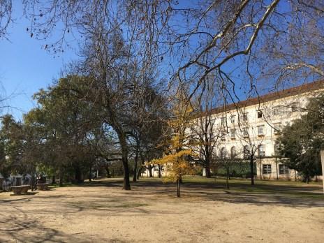 Jardim Botânico da Universidade de Coimbra