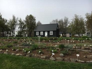 Akureyri - Jardim Botânico
