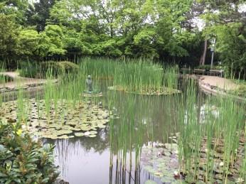Ilha Margarida - Jardim Japonês