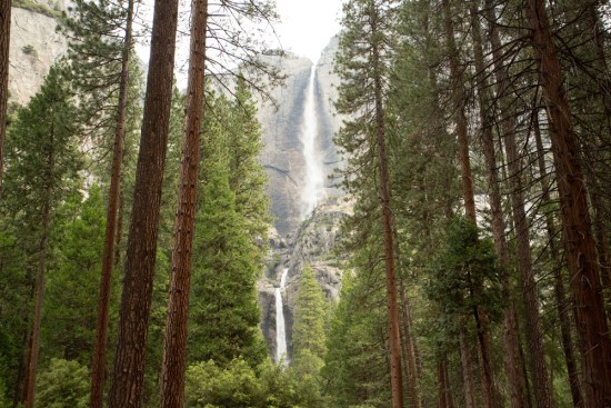 Yosemite National Park Upper and Lower Falls viewed from forest