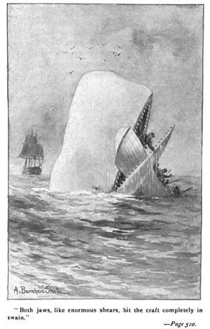 "Illustration of a later edition of ""Moby Dick"""