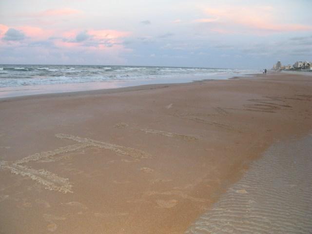 sandy beach shore