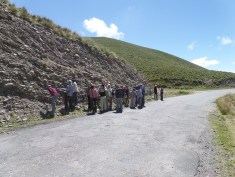 Be careful when you pass by a herd of geologists.
