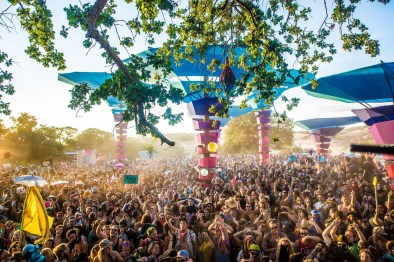 Woogie-Weekend-02