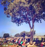 yoga out loud
