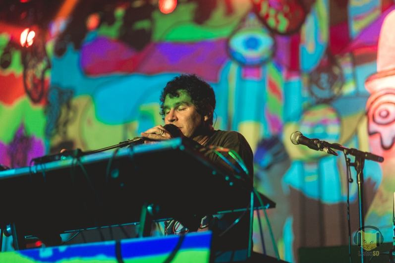 animalcollective31