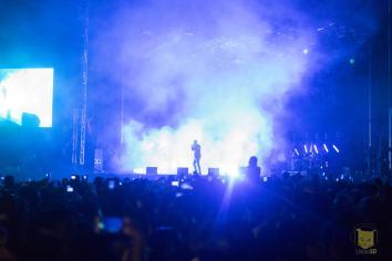 daynnightfestival61