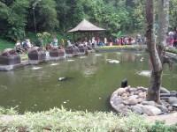 Teras Cikapundung, Bandung