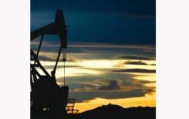 Cotización del crudo cerró jornada al alza