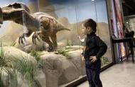 Pasión por los dinosaurios: no es una obsesión, es una oportunidad de aprendizaje
